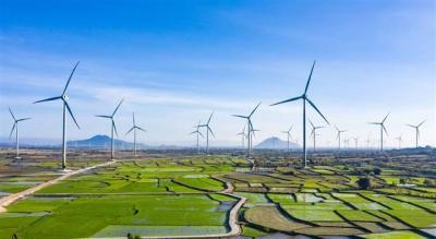 Quy hoạch điện VIII: Tăng điện than, gác điện gió